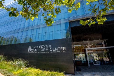 南加大干细胞研究人员的发现正在改变人类生活-南加州大学中文官网