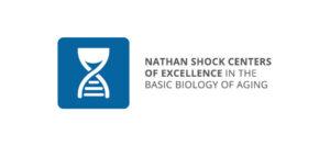 南加州大学Leonard Davis老龄科学院和Buck老年病研究中心荣获NIA的460万美元拨款-南加州大学中文官网